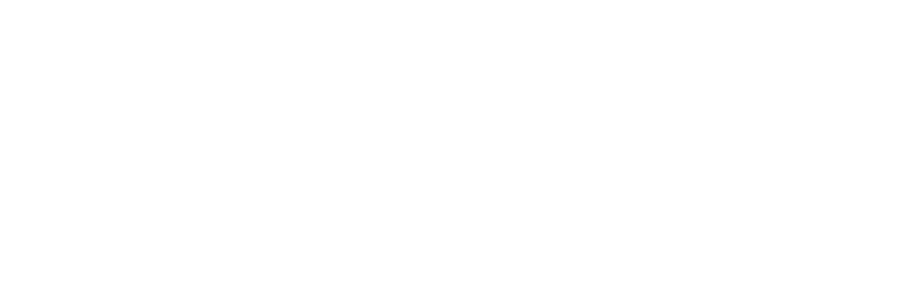 Swan Falls Technology logo